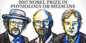 Nobel Prize Winners for Circadian Rhythm Research